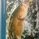 Smallmouth Bass Book