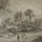 Farm in The Regents Park, Antique Victorian Print London from 1878