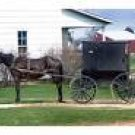 Amish Recipes Ebook