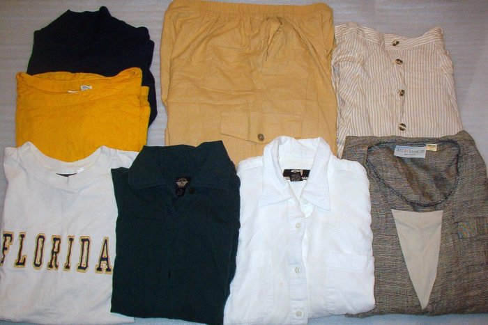 Mixed Lot Clothing Ladies Size Medium 8 Pc Shirts, Pants, Skirt Dockers, Rue 21, Plus More