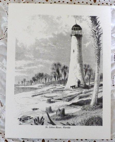 St Johns River Florida Black on White Replica Artwork