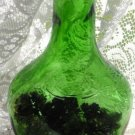 Collectible Green Wine Bottle Filled with Mini Pine Cones