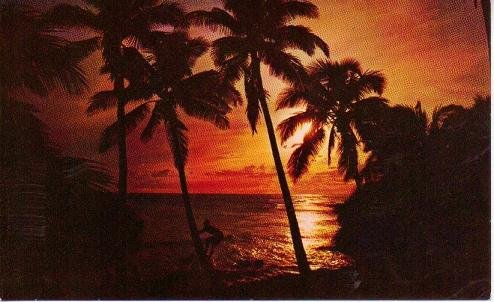 Hawaiian Sunset Postcard by Mike Roberts in Color 1960s Vintage Unused