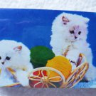 Sealed Deck of Playing Cards - Two White Kittens Motif - Older