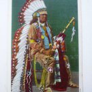 1940s Linen Postcard - Native American Chief Full Regalia ~ Pahsetopah ~ Vintage