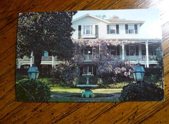 Vintage Post card Camden SC Gen Chestnut Full Color