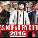 Mexican Narco Corridos Pesados 2 DVDs/52 Music Videos ft Calibre 50 Voz de Mando
