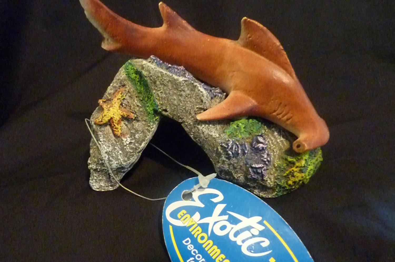 Blue Ribbon Exotic Environments Hammerhead Shark