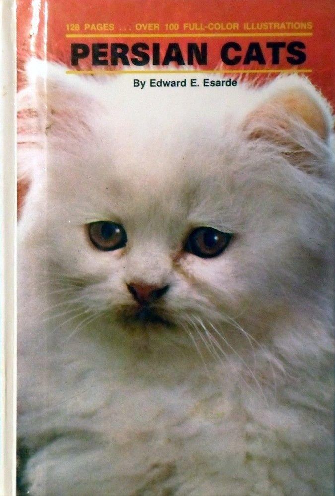 PERSIAN CATS By Edward E. Esarde