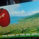 """The Home of the Big Apple"" Postcard 1959 Okanagan Valley"