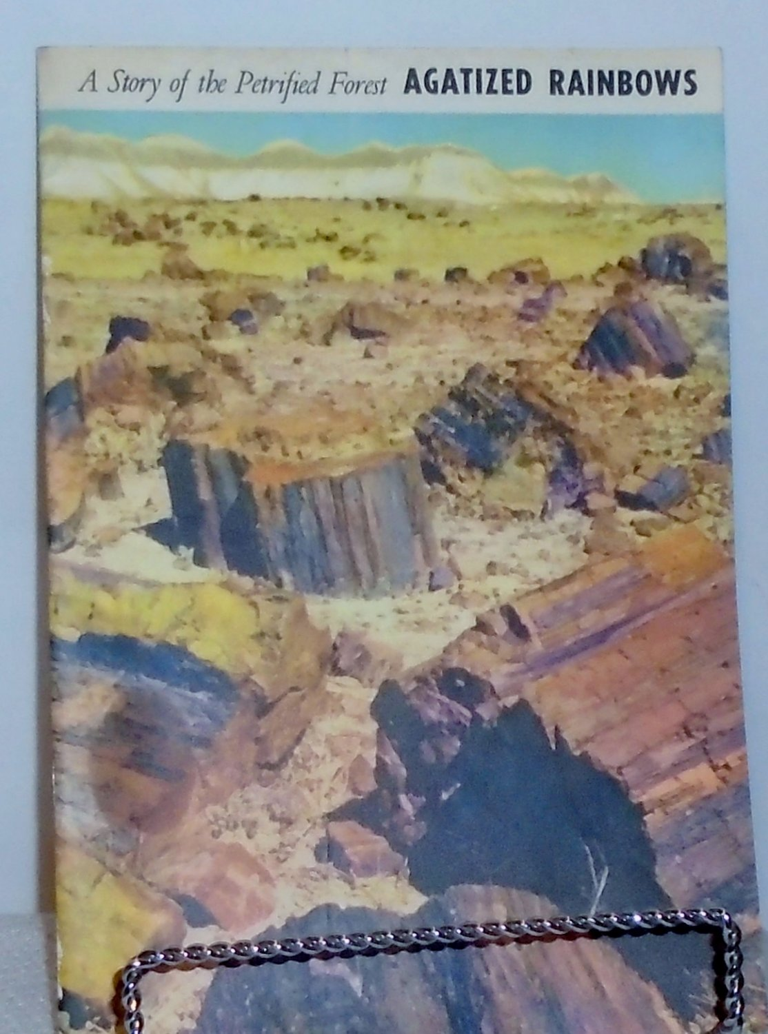 A Story of the Petrified Forest Agatized Rainbows - 1951