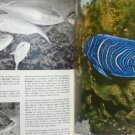 The Pictorial Encyclopedia of Fishes - S. Frank