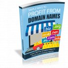 Simple Ways To Profit From Domain Names | E-Book Download