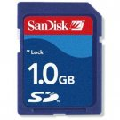 SanDisk - 1GB Secure Digital Memory Card for Nintendo Wii
