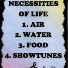 5085 Necessities of life 1 Air 2 4 Showtunes Music Saying Signs Plaques Musician Gifts