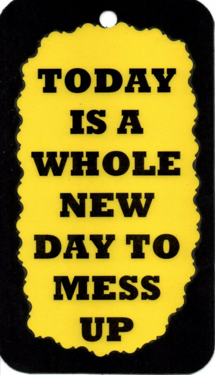 3084 Today Is A Whole New Day To Mess Up Humorous Funny Saying Signs Plaques