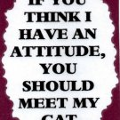 3153 Humorous Refrigerator Magnet Sign If You Think I Have An Attitude Meet Cat