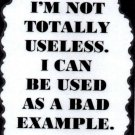 3287 Humorous Refrigerator Magnet Sign I'm Not Totally Useless Bad Example
