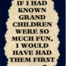 3039 Humorous Refrigerator Magnet Signs If I Had Known Grandchildren Were So