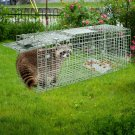 Trap Mouse Catch Bait Live Animal Cage