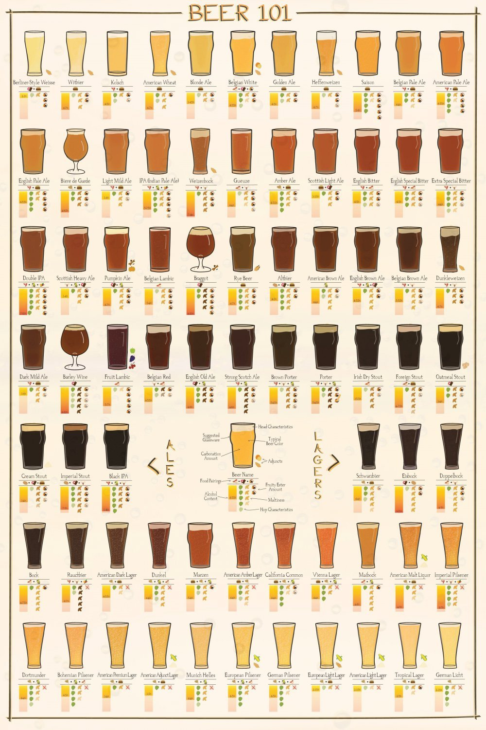 Many Varieties of Beer 101 Chart 24x35 inches Canvas Print