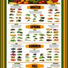 Ultimate Guide to Buying Fruits and Vegetables Chart 18x28 inches Canvas Print