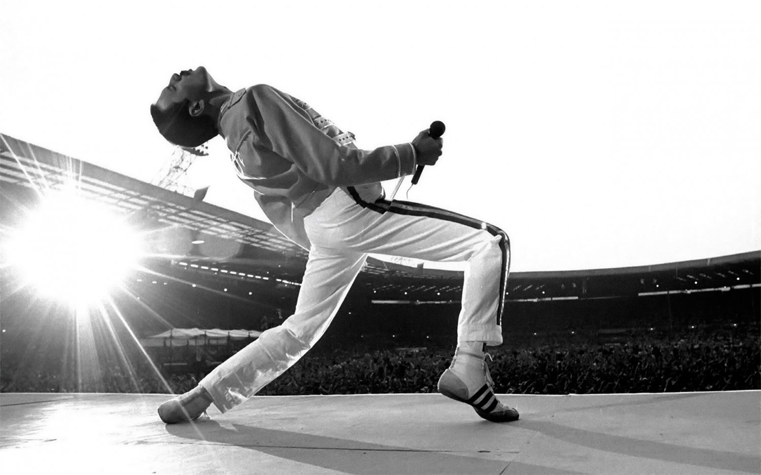 Freddie Mercury  18x28 inches Canvas Print