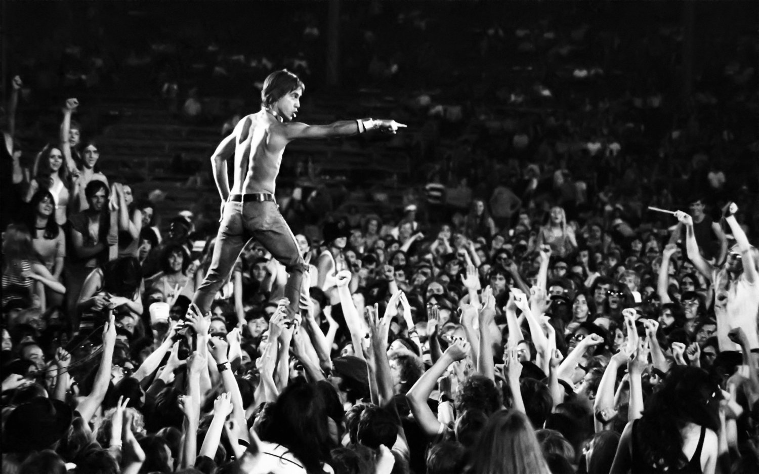 Iggy Pop  18x28 inches Poster Print