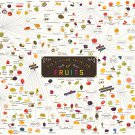 The Various Varieties of Fruits Chart   13x19 inches Poster Print