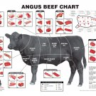 Angus Beef Chart  18x28 inches Canvas Print