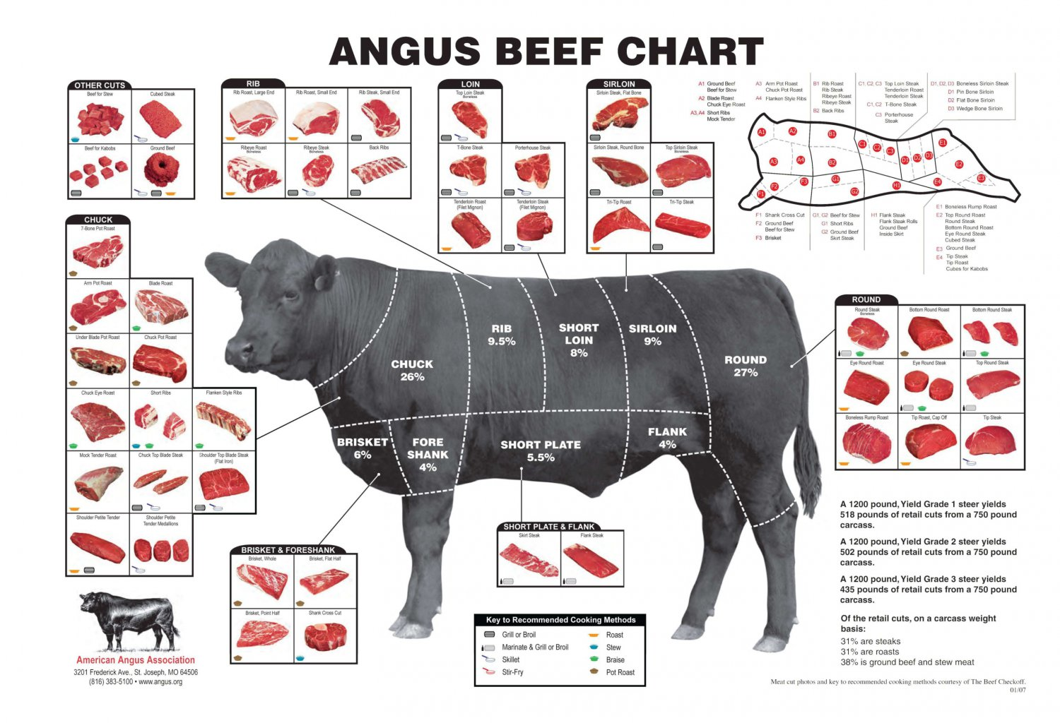 Angus Beef Chart  24x35 inches Canvas Print