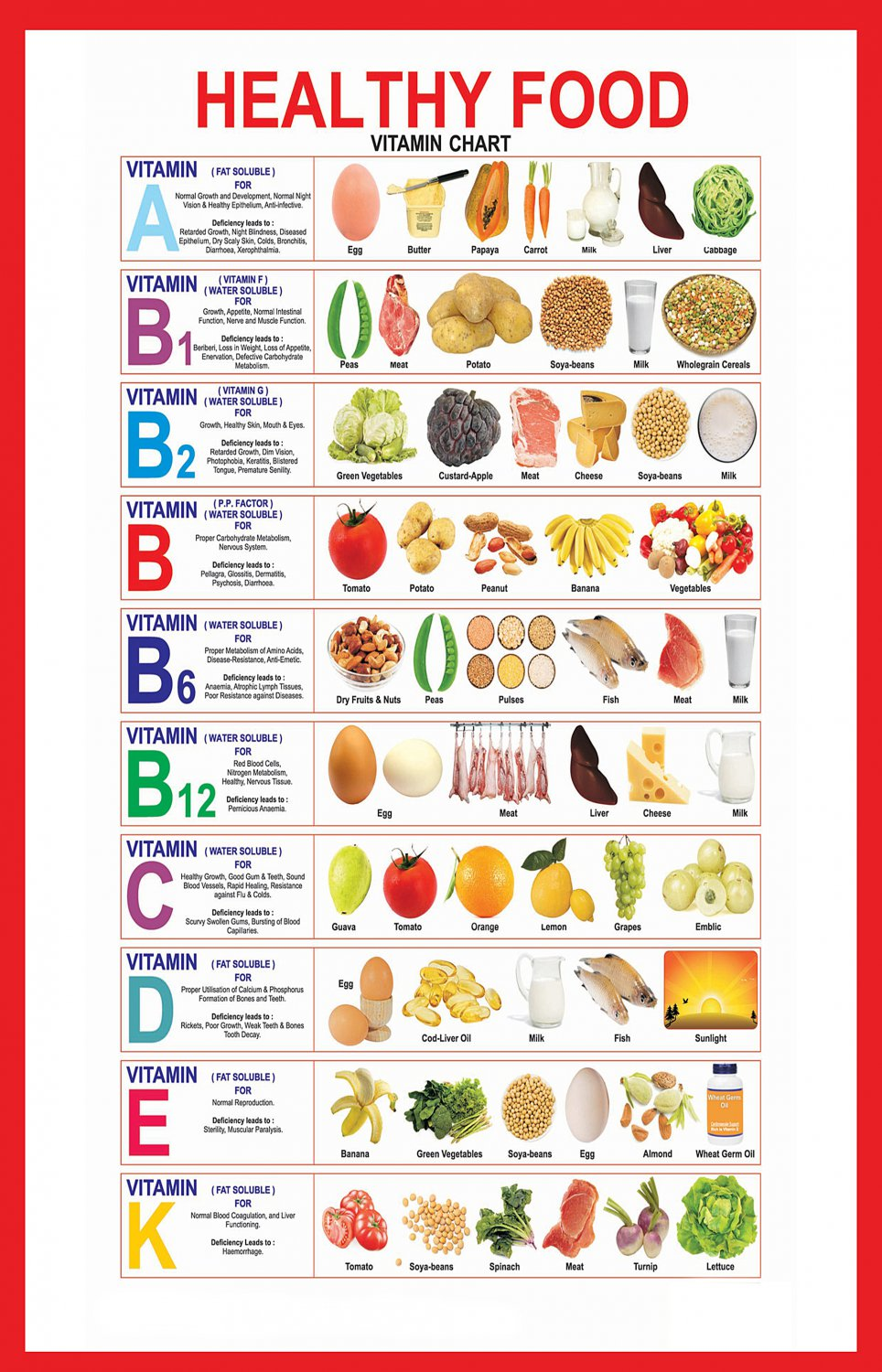 Healthy Food Vitamin Infographic Chart   18x28 inches Canvas Print