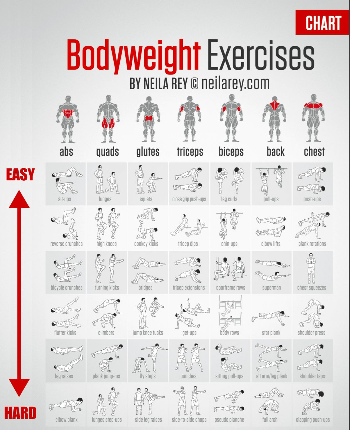 Bodyweight Exercises Chart   18x28 inches Poster Print