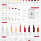 Basic Wine Guide Chart  18x28 inches Canvas Print
