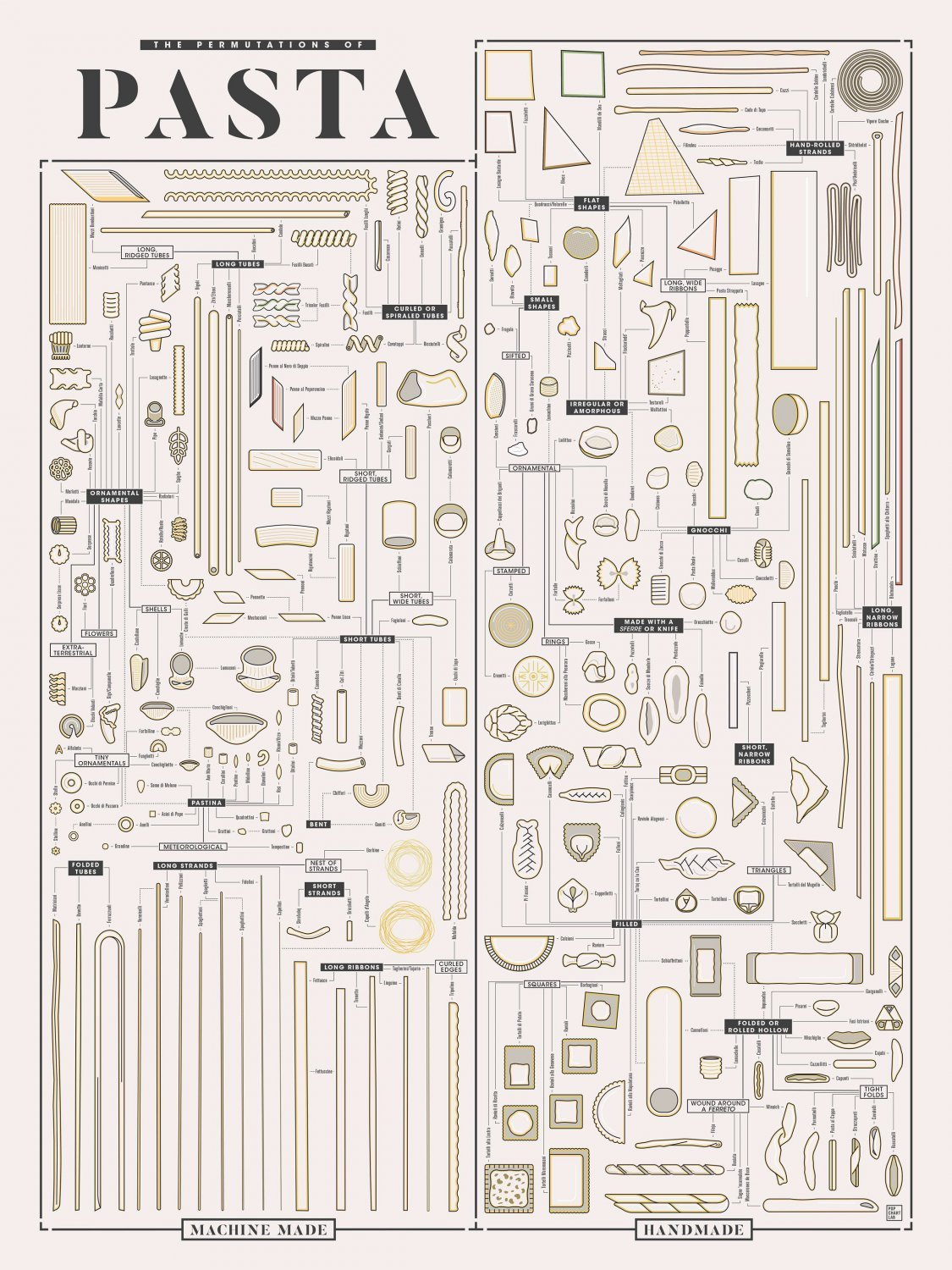 Different kinds of Pasta shapes Chart  24x35 inches Canvas Print