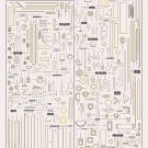 Different kinds of Pasta shapes Chart  18x28 inches Poster Print