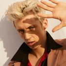 Troye Sivan   18x28 inches Poster Print