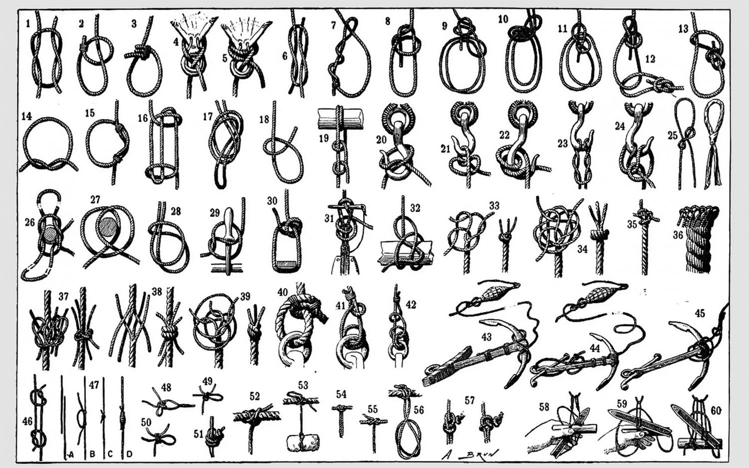 Knots and Splices Chart  18x28 inches Poster Print