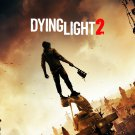 Dying Light 2  18x28 inches Canvas Print