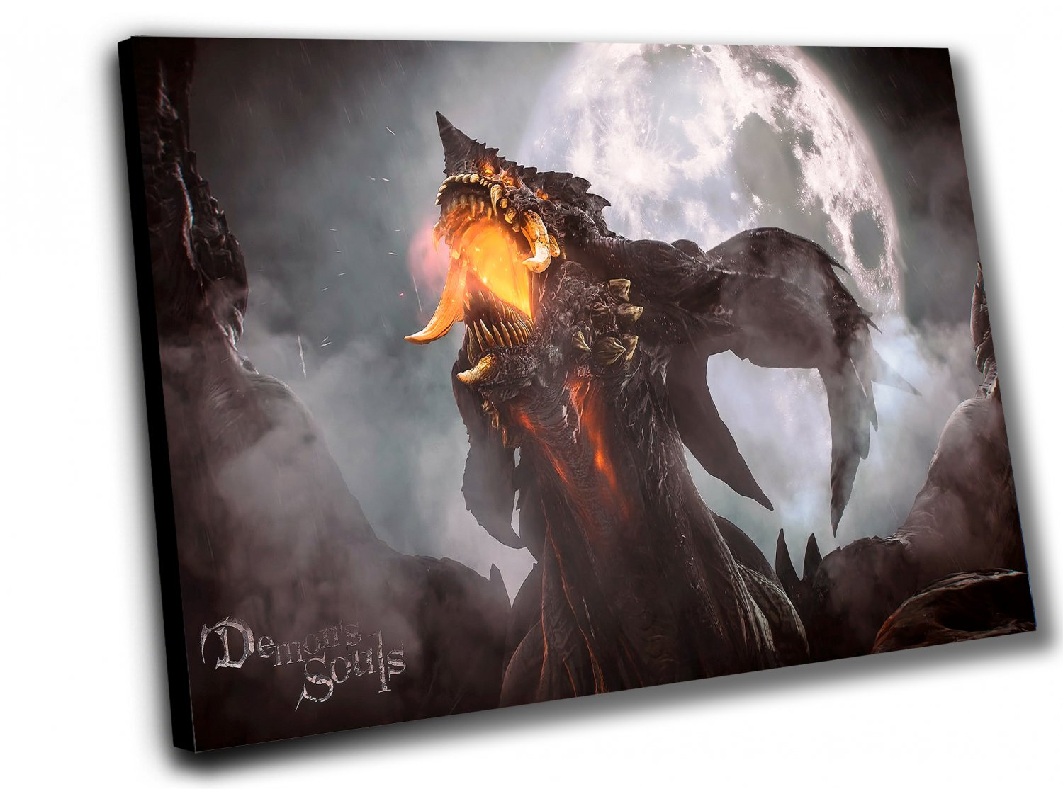 Demon's Souls  14x20 inches Stretched Canvas
