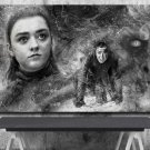 Game of Thrones, Arya Stark, The Night King  24x35 inches Canvas Print