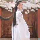 Hanfu Traditional Chinese Men's Costume of the Ming Dynasty
