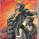 Age of Ultron #9