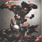 X-Force #1B