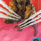 MARVEL UNIVERSE X-MEN 1994 #15 SABERTOOTH