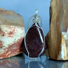 Dinosaur bone stone pendant, deep red fossil necklace.