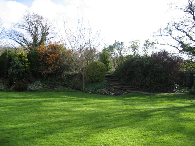 Create The Perfect Lawn