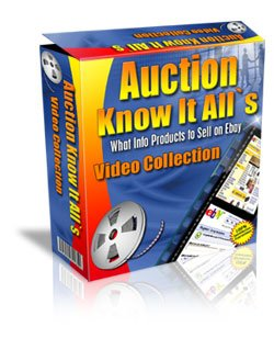 So What Ebooks Should I sell of eBay?
