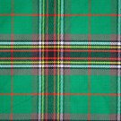 Tara Murphy Traditional Hand Fringed Kilt FLY PLAID and Brooch / 100+Tartan available