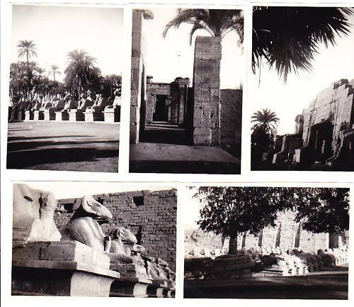 5 ORIGINAL PHOTOS pictures of the temples of Karnak EGYPT from 1949